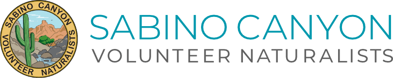 Sabino Canyon Volunteer Naturalists